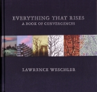 Book cover for Everything That Rises