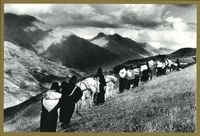 Photo of a large line of people walking through plains beside a mountain range.