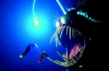 Image of a screen capture from the movie Finding Nemo.